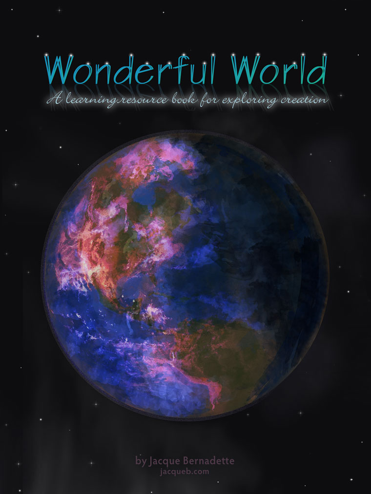 Wonderful World book
